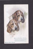 Dog Card -  Rough Basset Hounds. - Perros