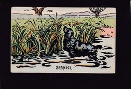 Dog Card - Artist Drawn Spaniel. - Perros