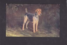 Dog Card -  The Welsh Terrier.   Spratts Portrait Series.   Artist Drawn. - Perros