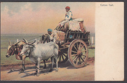 INDIA, Native COTTON CART - Colour Printed Postcard - India