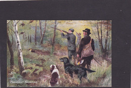 Dog Card -   Pheasant Shooting.    Artist Drawn.   R Tuck. - Perros