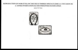Belgique Feuillets N/B    ZNP 14 Les Handicapés - Zwarte/witte Blaadjes