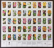 Etats Unis - USA - Feuille Complete N** Luxe , Fleurs Wildflowers De 1991 - Fogli Completi