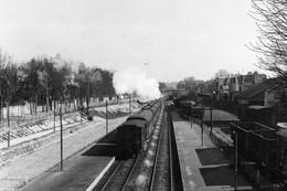 Le Parc-Saint-Maur. Cliché Jacques Bazin-13-03-1956 - Trains