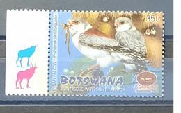 Botswana - 2001 - MNH As Scan - Kgalagadi Park - Birds - 1 Stamp - Botswana (1966-...)