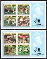 UPPER VOLTA (1995) Mushrooms. Set Of 2 Minisheets Of 4, Blue Background. Scott Nos 1041a,1042a. - Alto Volta (1958-1984)