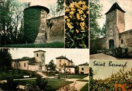Saint Bernard Divers Aspects          CPM Ou CPSM - Altri Comuni