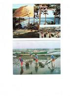 Lot 2 Cpm - 33 - Arcachon - Parcs à Huitres - Ostréiculteurs - RAMASSAGE - 1986 - Bateau De Pêche - Arcachon
