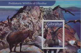 Animaux Préhistoriques - Prehistoric Wildlife 2007 XXX - Gibraltar