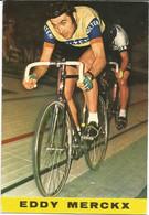 Eddy MERCKX (Molteni) - N'a Pas Circulé - Wielrennen