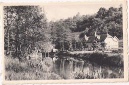 Lompret-lez-Chimay - La Vallée Des Oiseaux - Chimay