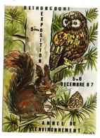 """.BETHONCOURT- 5-6 Décembre 87-5e Exposition """"Année Environnement""""--écureuil-chouette-cachet...tp Champigon.....à Saisir - Otros Municipios"""