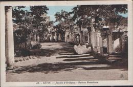 CPA ALGERIE SETIF No.26 JARDIN D'ORLEANS RUINES ROMAINES ALGER MORE ALGERIA LISTED FOR SALE - Setif
