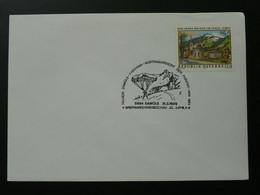 Parachute Oblitération Sur Lettre Postmark On Cover Autriche Austria Ref 69826 - Parachutting