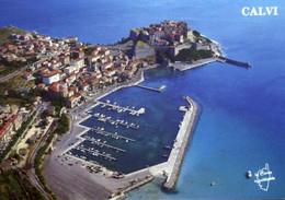 France > [20] [2B] Haute Corse > Calvi > Vue Aérienne / 110 - Calvi