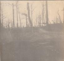 Photo 14 18 Secteur WYTSCHAETE (Wijtschate, Heuvelland) - Le Champ De Bataille (A231, Ww1, Wk 1) - Heuvelland