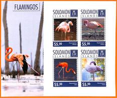 A7015 - SOLOMON ISLANDS, Error, 2014, IMPERF MINIATURE SHEET: Flamingos, Birds - Flamingo