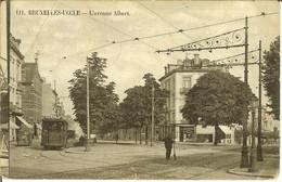 """CP De BRUXELLES-UCCLE ( Ukkel ) """" L'Avenue Albert """" - Uccle - Ukkel"""