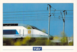 France Postcard 1992 Albertville Olympic Games - TGV Atlantique 515,3 Km W/Ad For The Games On Sides Mint - Winter 1992: Albertville