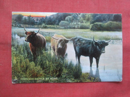 Tuck Series -Highland & Lowland  Highland Cattle At Home Paper Peel Back Side        Ref 5059 - Non Classés
