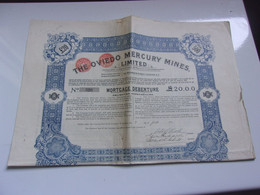 THE OVIEDO MERCURY MINES (1910) - Non Classificati