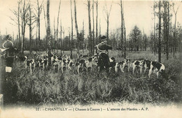 CHASSE A COURRE CHANTILLY L'ATTENTE DES HARDES 1930 - Hunting