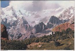 PAKISTAN - Snow Clad Raka Poshi Peak, Hunze State, North West Region,  Nice Stamp - Pakistan