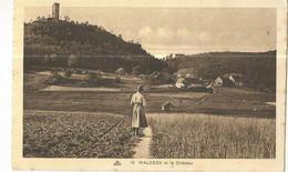 CPA. D.57, N°19, Waldeck Et Le Château ,Hôtel De L' Etang De Hanau ,Ed. CAP - Altri Comuni