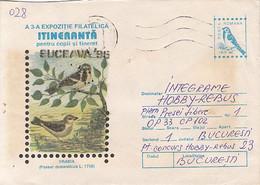 ANIMALS, BIRDS, HOUSE SPARROW, COVER STATIONERY, 1996,ROMANIA - Sparrows