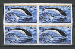 TAAF 2004 N° 385 ** Bloc De 4 Neuf MNH Superbe C 12 € + Oiseaux Birds Poissons Dauphin Fishes Faune Fauna Animaux - Neufs