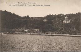 83 - SAINTE MAXIME La Colline Des Mimosas - Sainte-Maxime