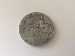 """Ancienne Médaille  - """"XVE Fête Régionale Du Nord Pas De Calais Concours International De Gymnastique 1895"""" - Francia"""