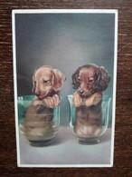 L37/390 PETITS CHIENS DANS DES VASES - Dogs