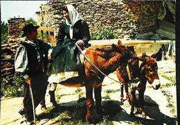 ►    CPSM   Corse  Couple De Corse âne - Other Municipalities