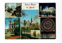 CGF 75 Paris Bouquiniste Notre Dame - Editions D'Art Yvon - Mercanti