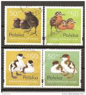 POLONIA POLAND POLSKA - 1997 UCCELLI 4v. - Sparrows