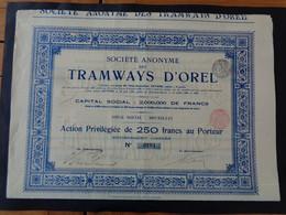 BELGIQUE - BRUXELLES 1905 - LOT 3 TITRES IDENTIQUES - SA DES TRAMWAYS D'OREL - ACTION PRIVILEGIEE DE 250 FRS - Unclassified