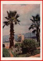 31886 Batumi The Georgian SSR 1955 Diesel Electric Ship Russian Ship Port Boat Palm Georgia USSR Soviet Card - Non Classificati