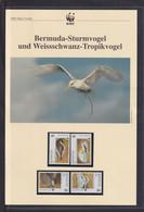 "2001  Bermuda  WWF  ""Bermunda Sturmvogel Und Weissschwanz-Tropikvogel"" Komplettes Kapitel - Collections, Lots & Series"