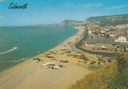 Postcard Sidmouth From Salcombe Hill [ Devon ] My Ref B24933MD - Altri