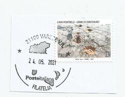 2021 TESORI DELL'ALTA MURGIA - CAVA PONTRELLI   USATO SU FRAMMENTO - 2011-...: Usati
