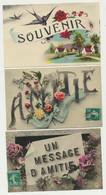 Lot De 3 Cartes Fantaisie - AMITIE - SOUVENIR - Messages - Hirondelles - Fleurs - - Zonder Classificatie
