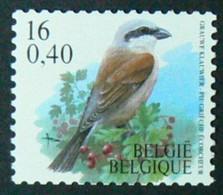 R95a, Oiseau Pie Grièche Ecorcheur, Avec N° Au Dos à 4 Chiffres, TB - Franqueo