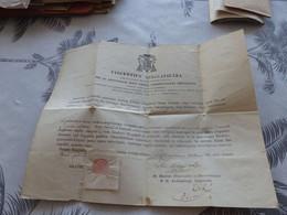 320 - Document Religieux, VINCENTIUS SPACCAPIETRA , Relique , - Religion & Esotericism