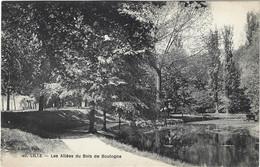 59   Lille  -  Les Allees Du Bois De Boulogne - Lille