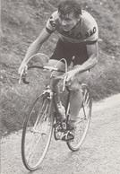 """CYCLISME - Bernard MASSON  Coureur Professionnel Chez """" Gitane """" 1973 - Ciclismo"""