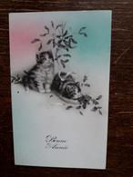 L37/396 CHATS . BONNE ANNEE - Katten