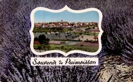 PUIMOISSON    ( ALPES DE HAUTE PROVENCE )    SOUVENIR DE PUIMOISSON - Gruss Aus.../ Gruesse Aus...