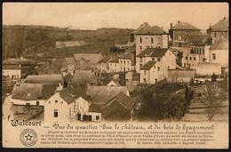 Walcourt - Vue Du Quartier Sur Le Château Et Du Bois De Spagnmont - Voir Scans - Walcourt