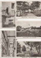 MÉNÉTREUX   LE PITOIS      COLONIE  DE VACANCES - Other Municipalities